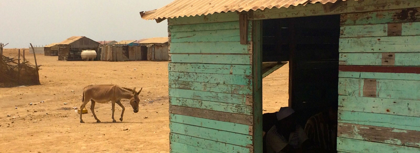 photo of a hut in the desert with a donkey in the background
